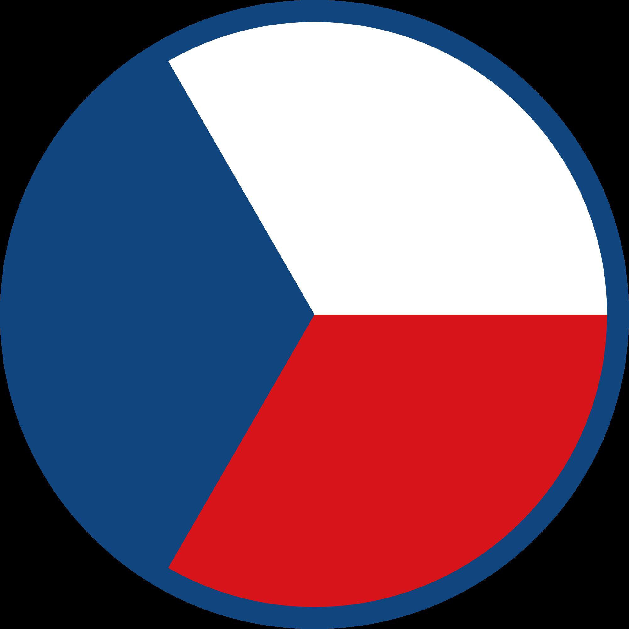 Превод на документи от и на чешки език